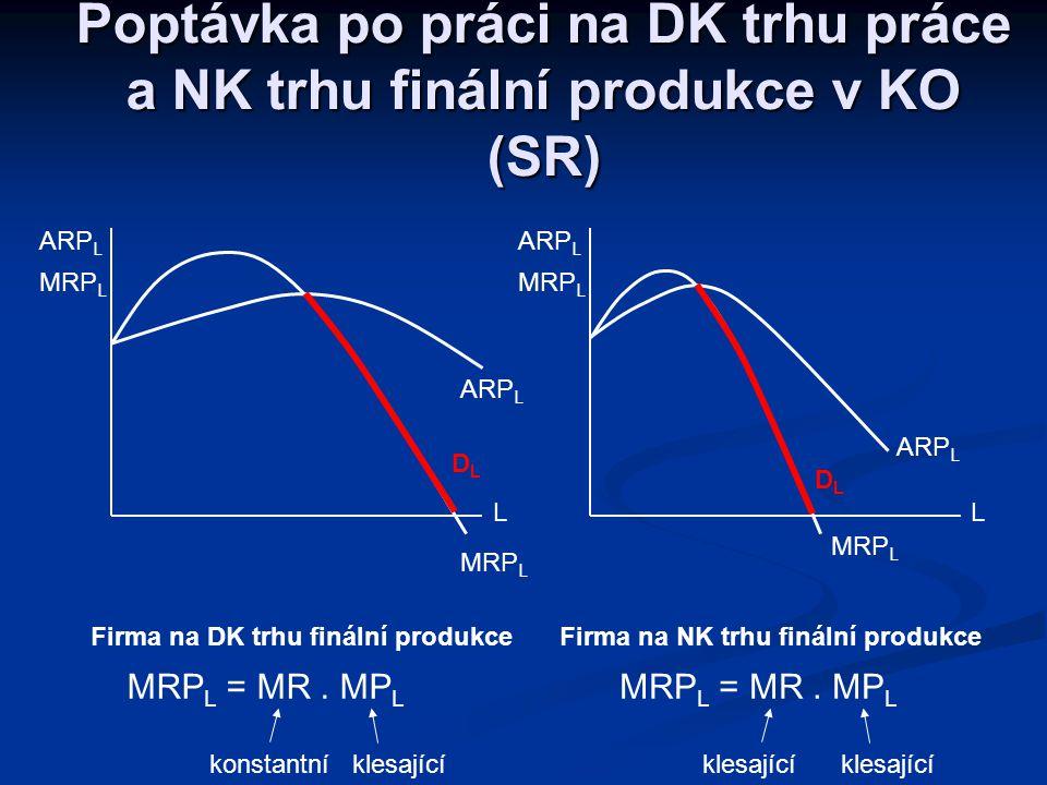 Firma na DK trhu finální produkce Firma na NK trhu finální produkce