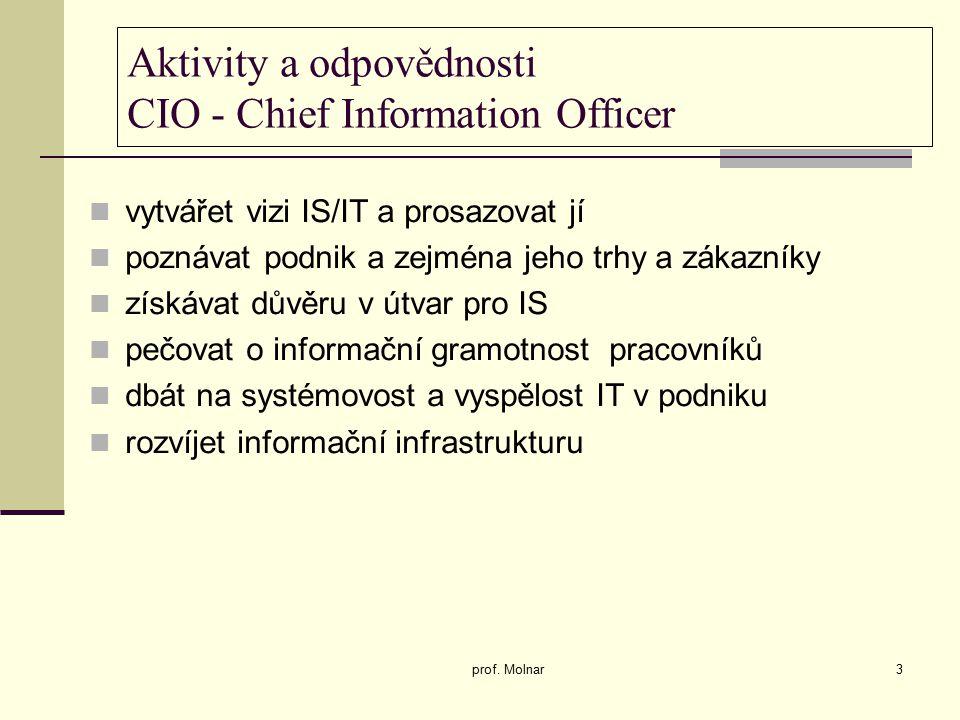 Aktivity a odpovědnosti CIO - Chief Information Officer