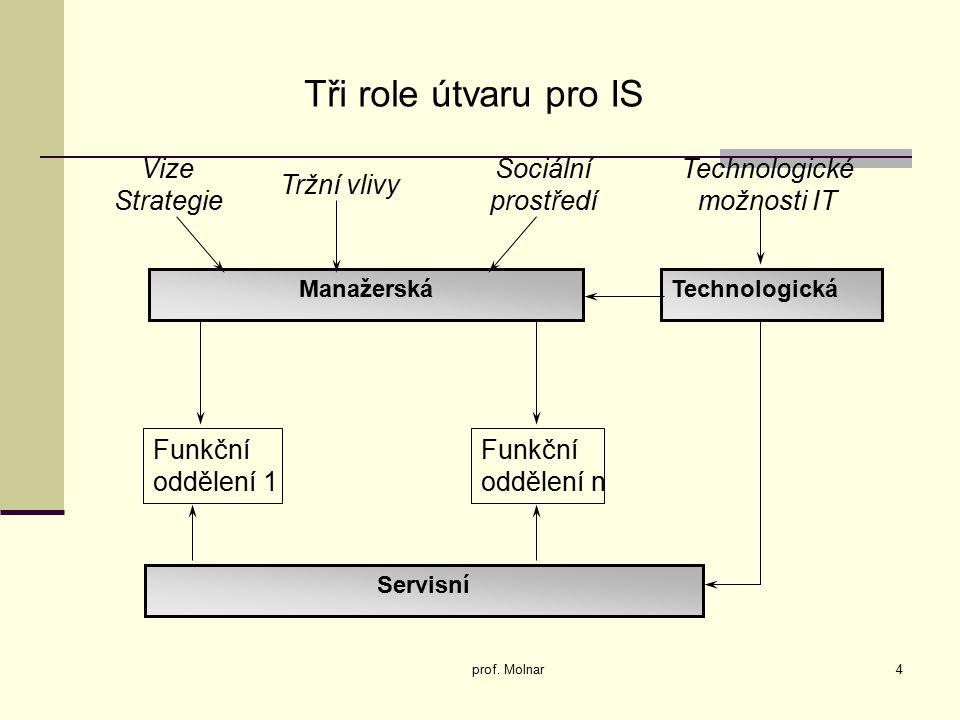 Tři role útvaru pro IS Vize Strategie Sociální prostředí Technologické