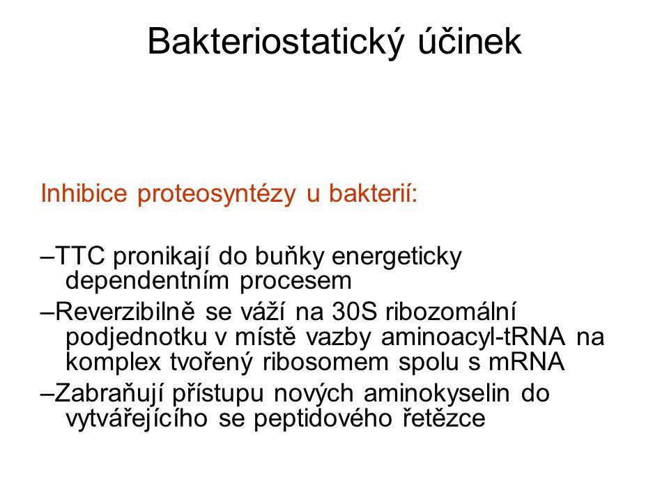 Bakteriostatický účinek