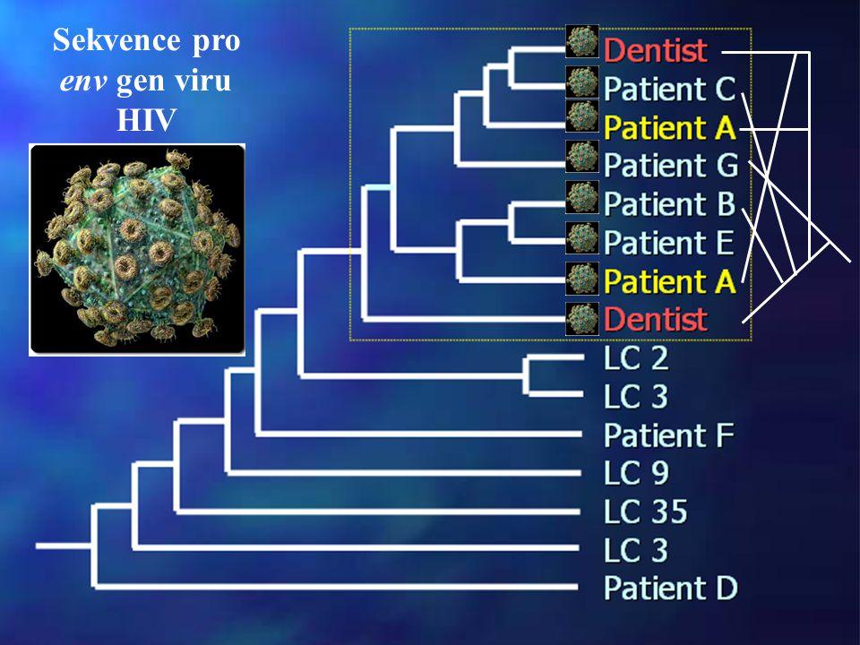 Sekvence pro env gen viru HIV