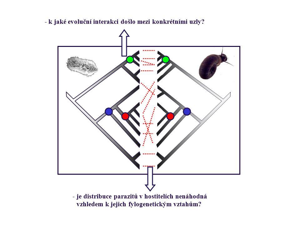 - k jaké evoluční interakci došlo mezi konkrétními uzly