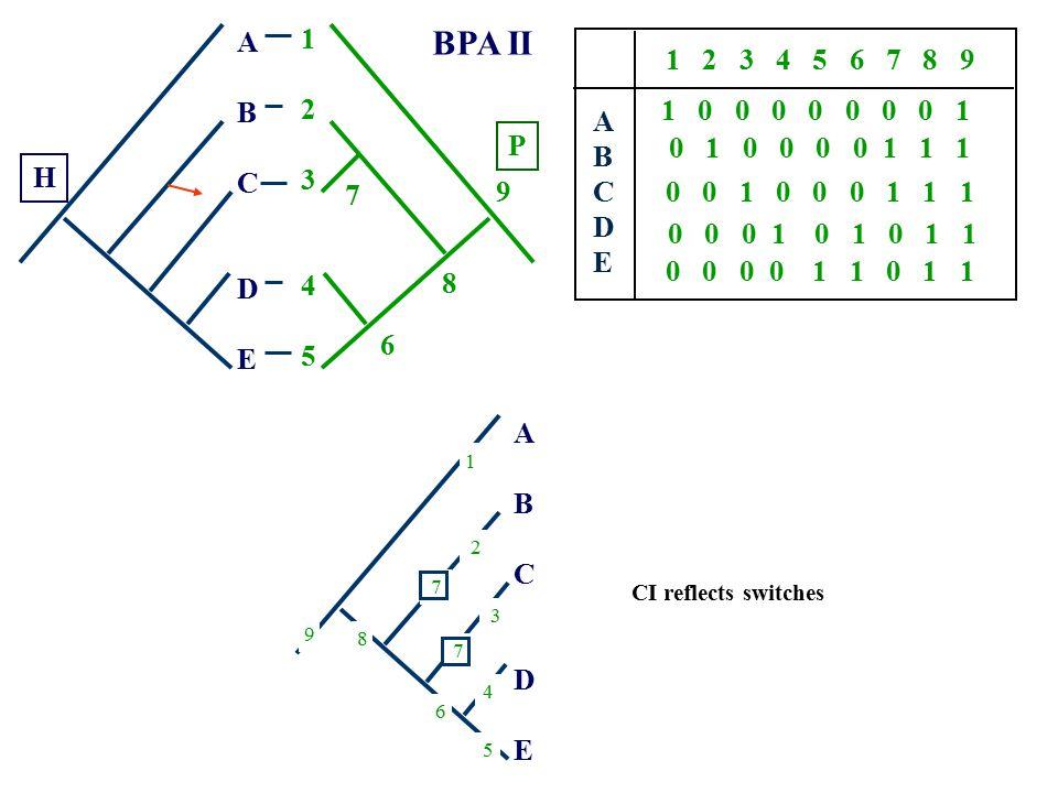 A B. C. D. E. 1. 2. 3. 4. 5. BPA II. 1 2 3 4 5 6 7 8 9. A. B. C. D. E.