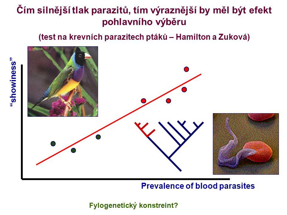 Čím silnější tlak parazitů, tím výraznější by měl být efekt pohlavního výběru