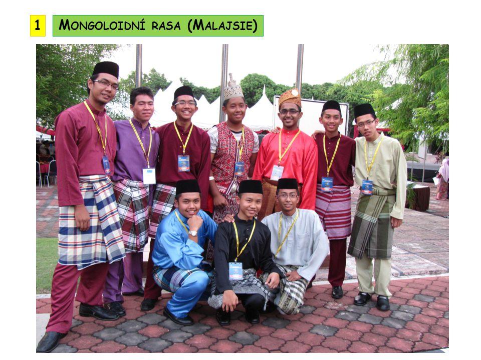 Mongoloidní rasa (Malajsie)