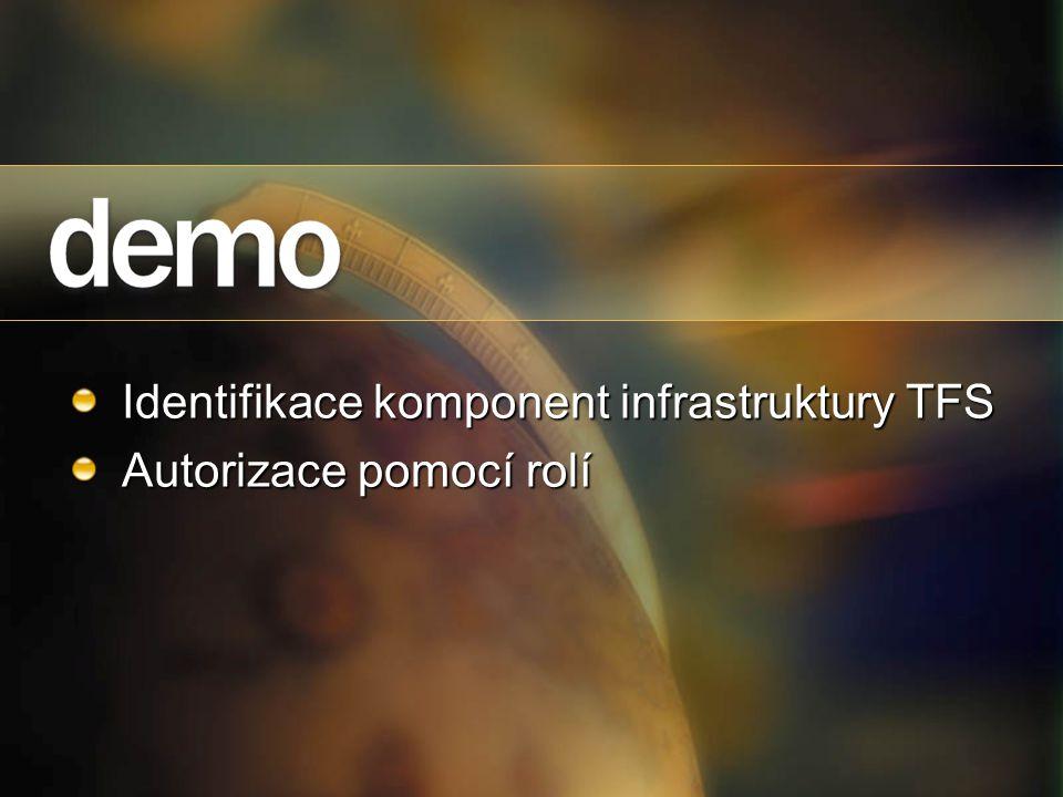 Identifikace komponent infrastruktury TFS