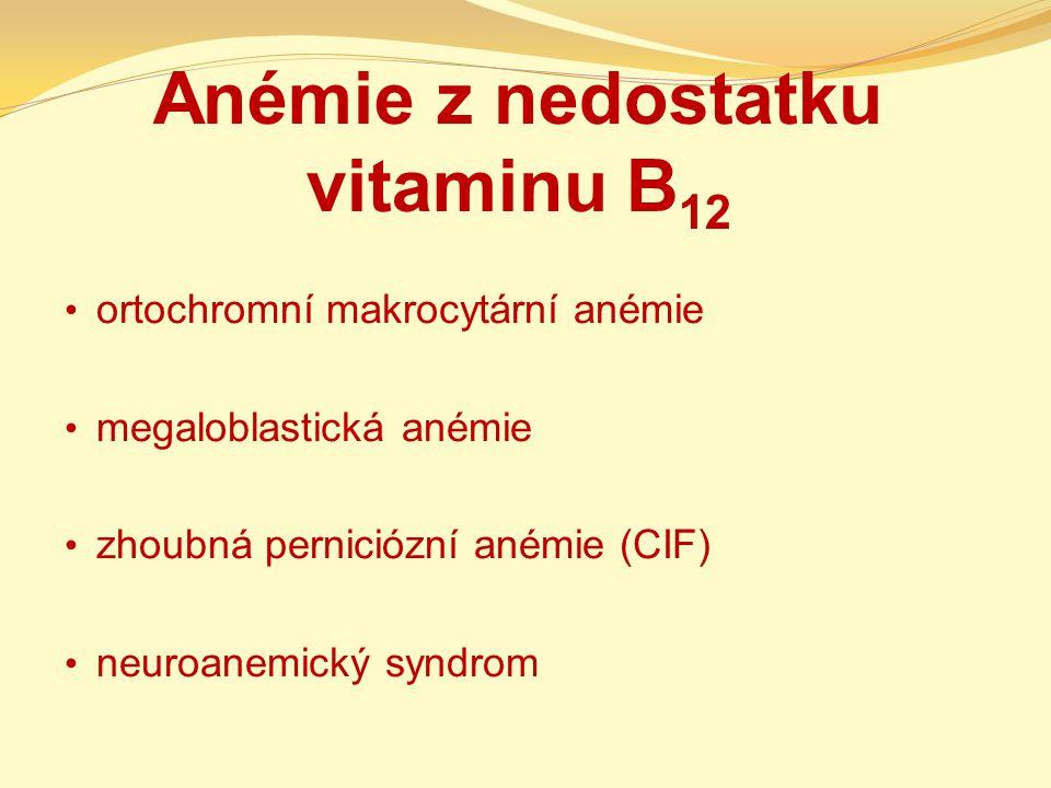 Anémie z nedostatku vitaminu B12
