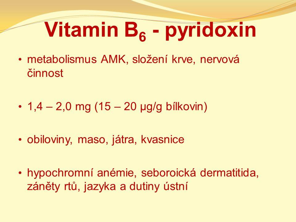 Vitamin B6 - pyridoxin metabolismus AMK, složení krve, nervová činnost