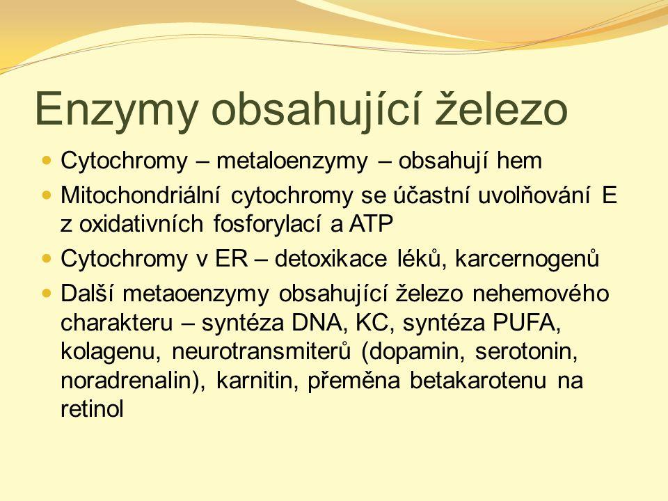 Enzymy obsahující železo