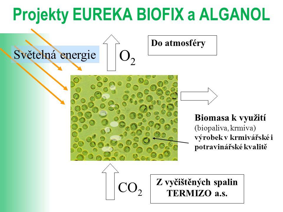 Projekty EUREKA BIOFIX a ALGANOL