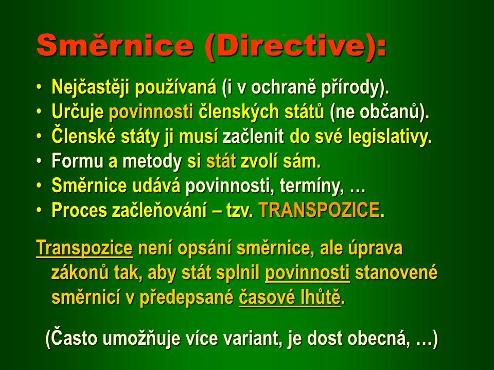 Směrnice (Directive):