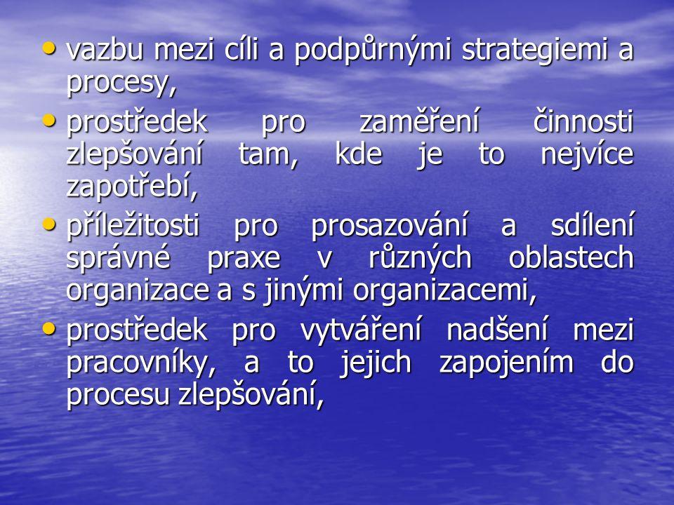 vazbu mezi cíli a podpůrnými strategiemi a procesy,