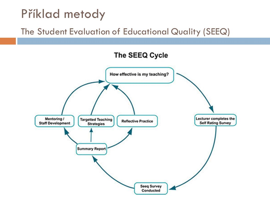 Příklad metody The Student Evaluation of Educational Quality (SEEQ)