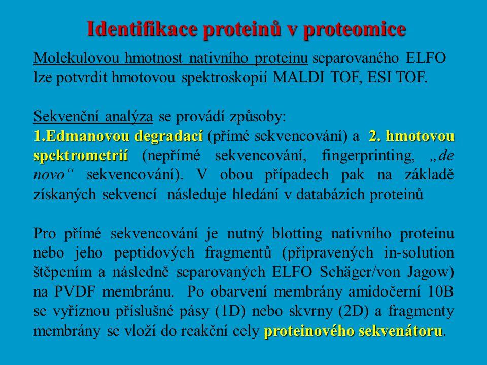Identifikace proteinů v proteomice