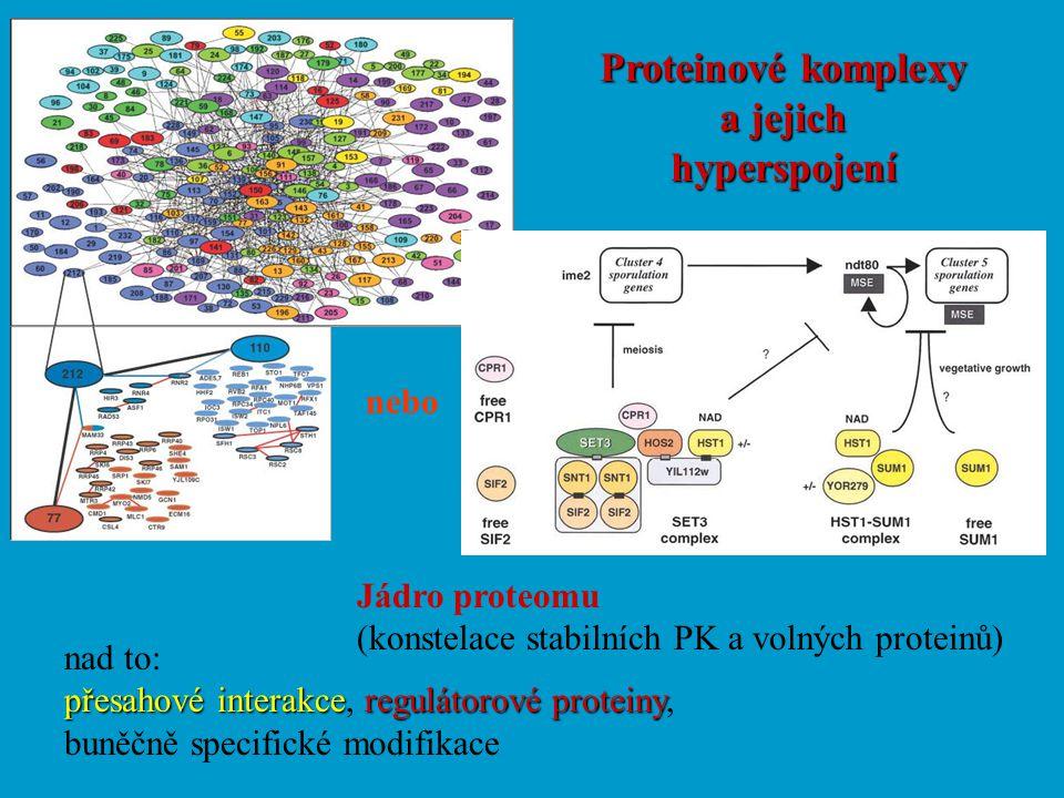 Proteinové komplexy a jejich hyperspojení