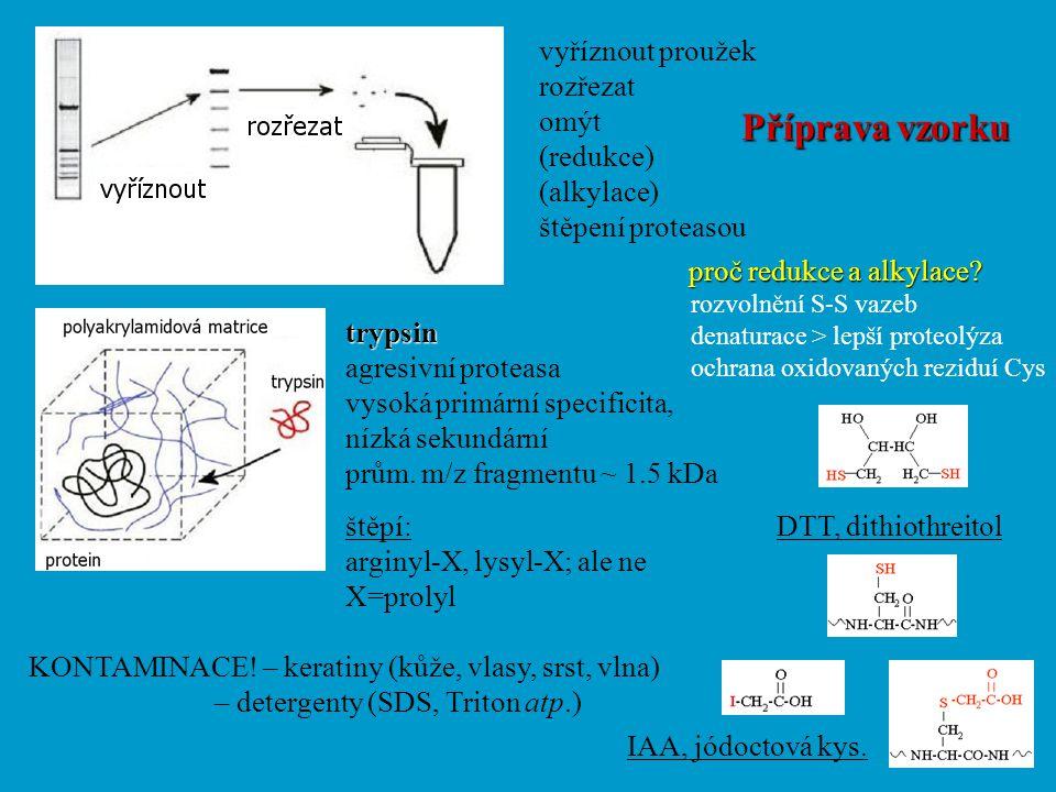 Příprava vzorku vyříznout proužek rozřezat omýt (redukce) (alkylace)