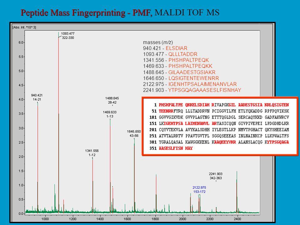 Peptide Mass Fingerprinting - PMF, MALDI TOF MS