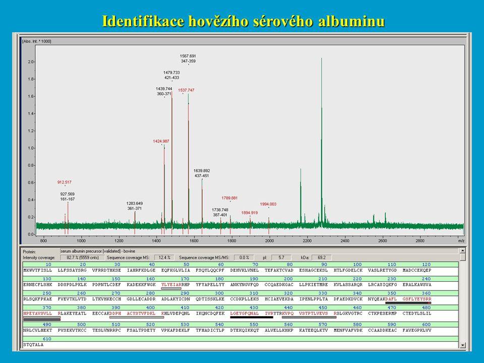 Identifikace hovězího sérového albuminu
