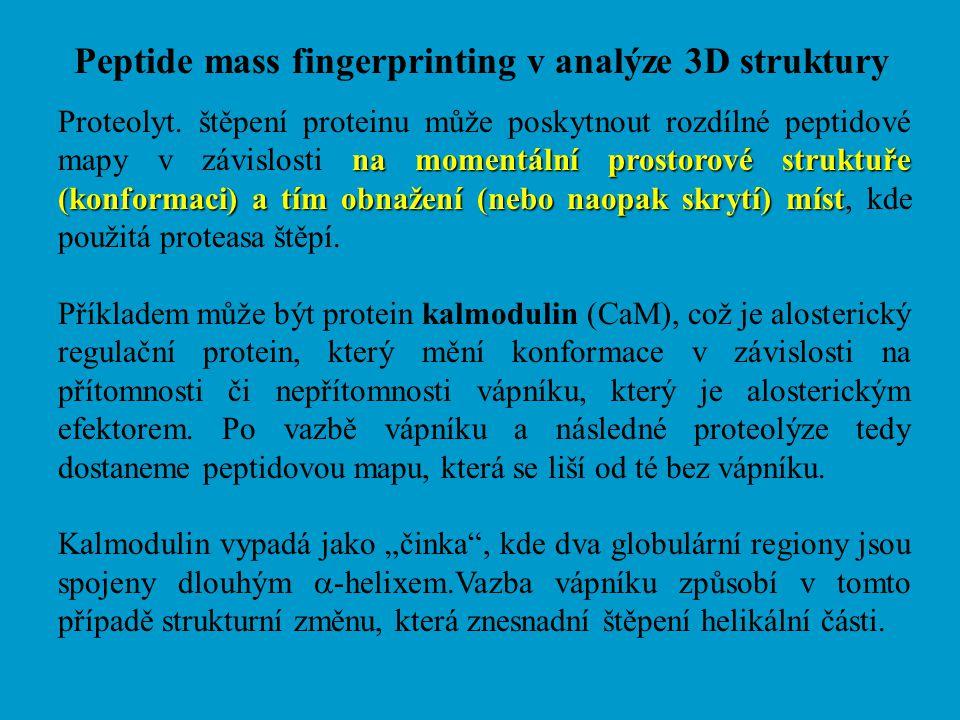 Peptide mass fingerprinting v analýze 3D struktury
