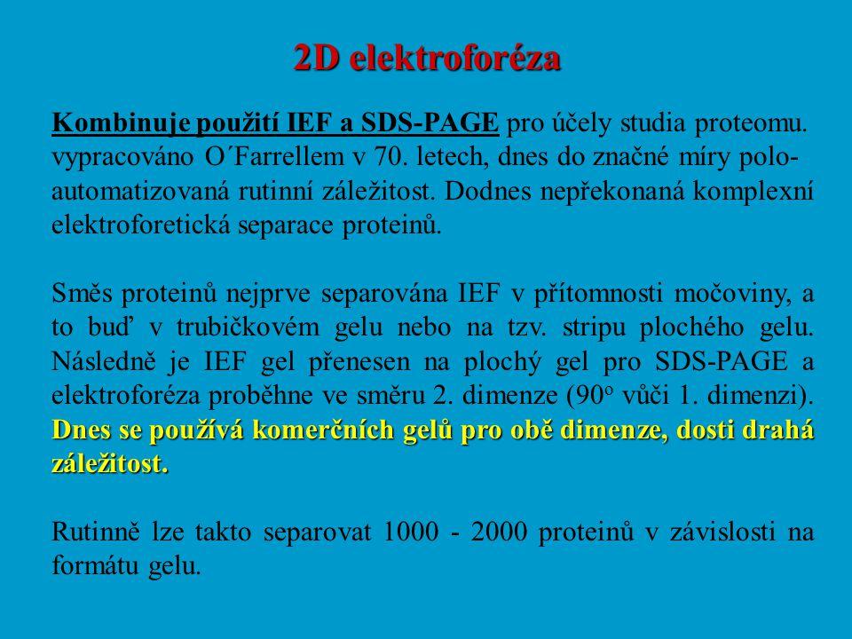 2D elektroforéza Kombinuje použití IEF a SDS-PAGE pro účely studia proteomu. vypracováno O´Farrellem v 70. letech, dnes do značné míry polo-