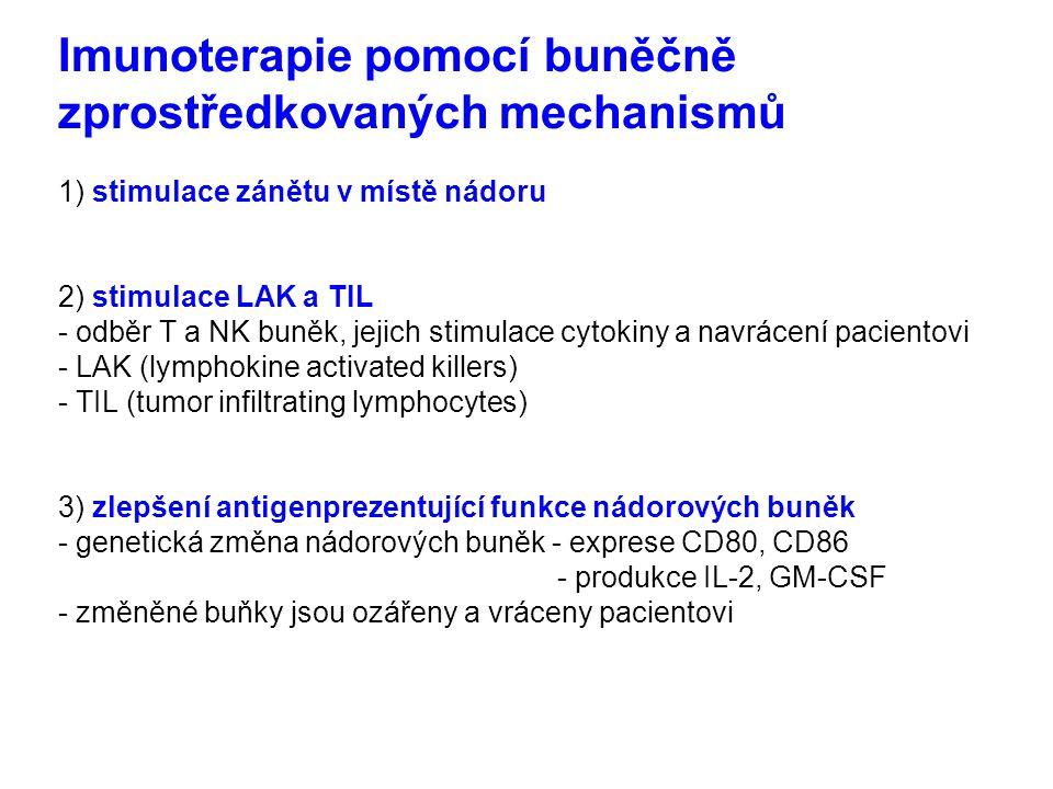 Imunoterapie pomocí buněčně zprostředkovaných mechanismů 1) stimulace zánětu v místě nádoru 2) stimulace LAK a TIL - odběr T a NK buněk, jejich stimulace cytokiny a navrácení pacientovi - LAK (lymphokine activated killers) - TIL (tumor infiltrating lymphocytes) 3) zlepšení antigenprezentující funkce nádorových buněk - genetická změna nádorových buněk - exprese CD80, CD86 - produkce IL-2, GM-CSF - změněné buňky jsou ozářeny a vráceny pacientovi