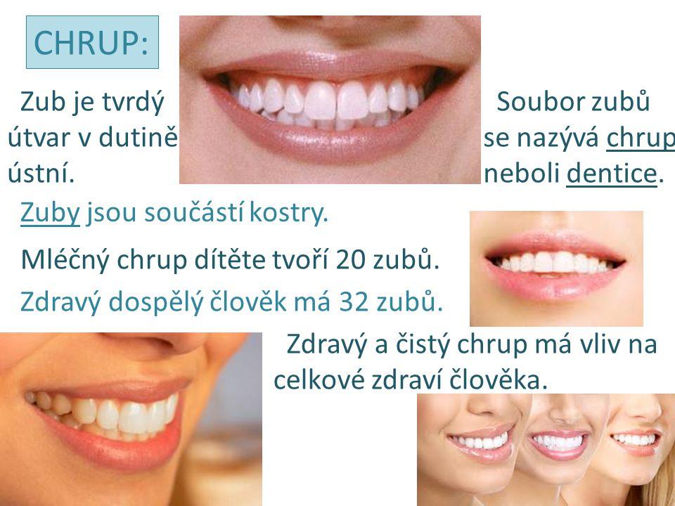 CHRUP: Zub je tvrdý útvar v dutině ústní. Soubor zubů se nazývá chrup