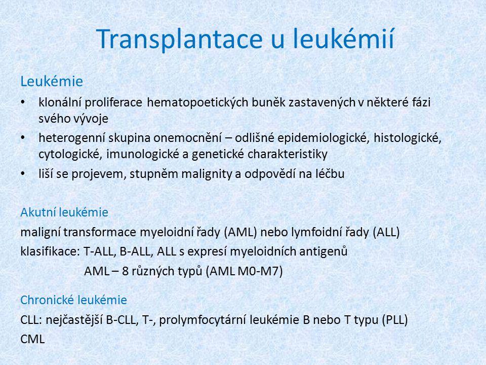 Transplantace u leukémií