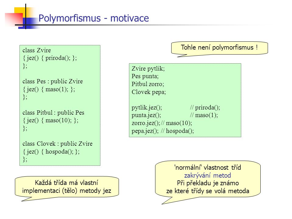 Polymorfismus - motivace