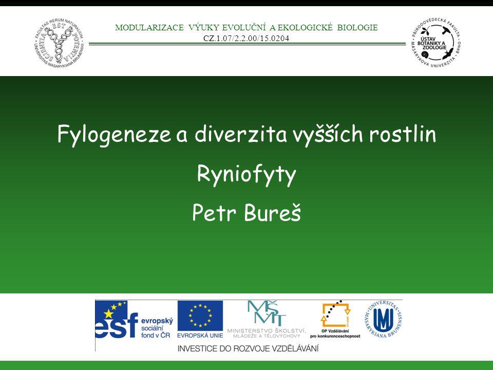 Fylogeneze a diverzita vyšších rostlin Ryniofyty Petr Bureš