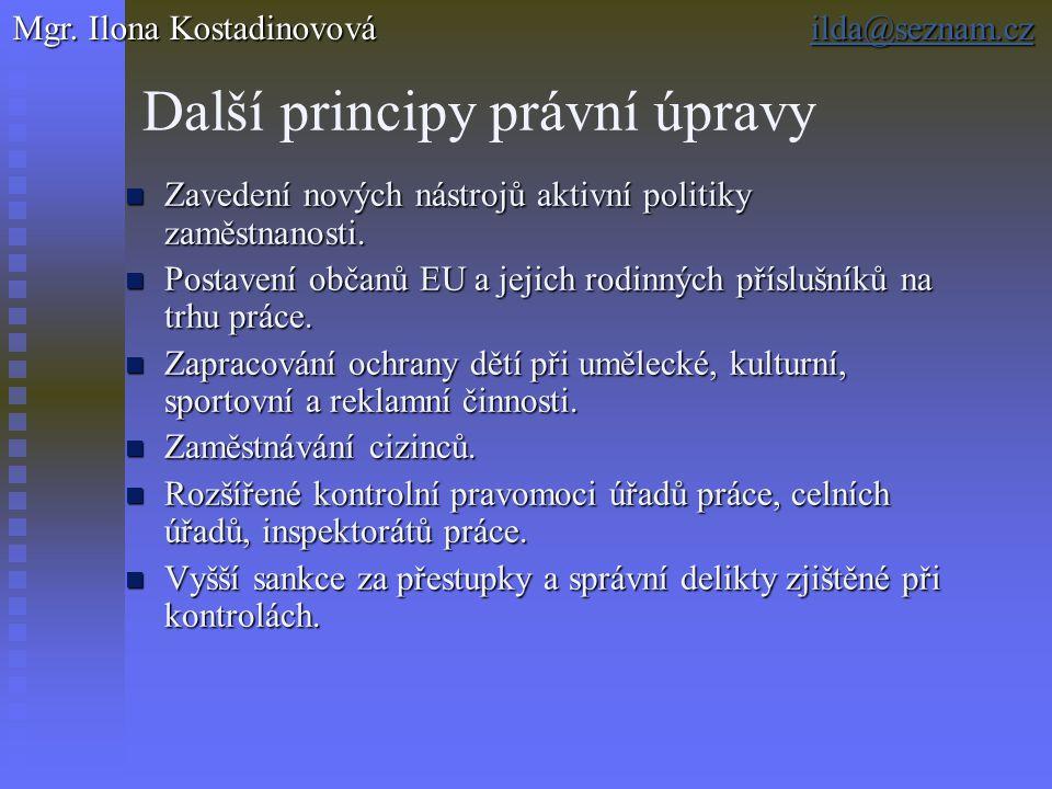 Další principy právní úpravy