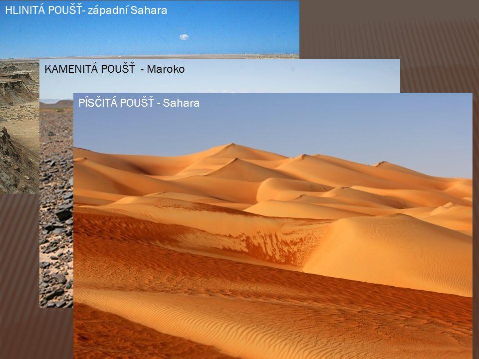 HLINITÁ POUŠŤ- západní Sahara