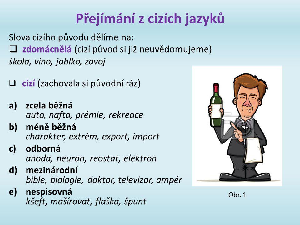 Přejímání z cizích jazyků