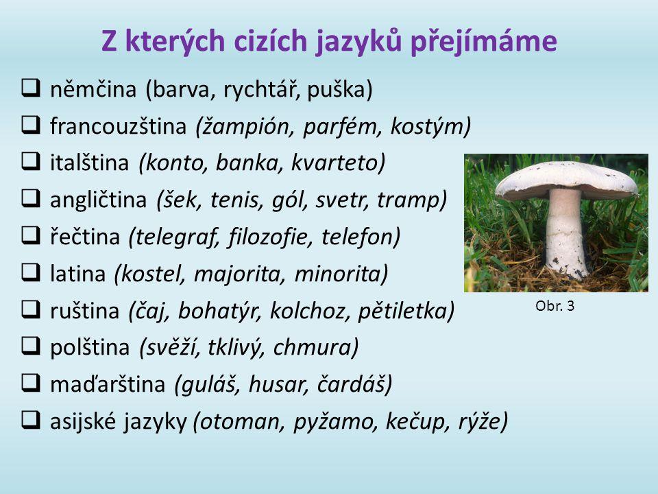 Z kterých cizích jazyků přejímáme