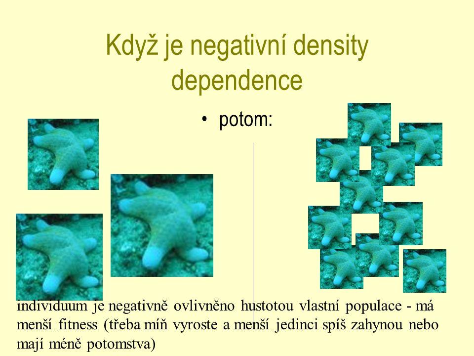 Když je negativní density dependence