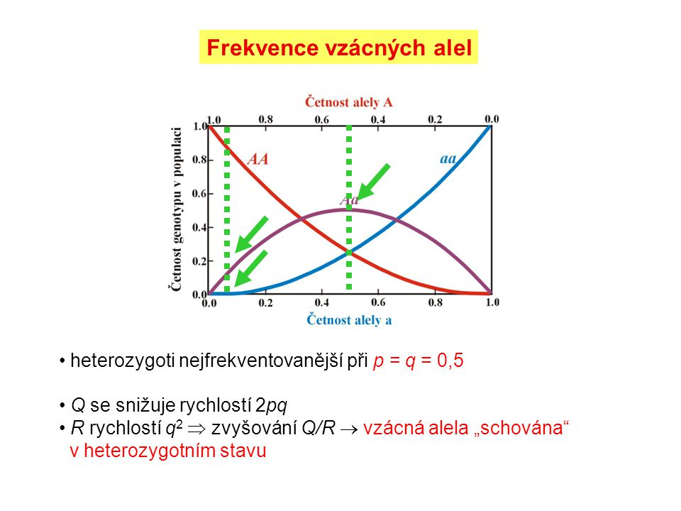 Frekvence vzácných alel