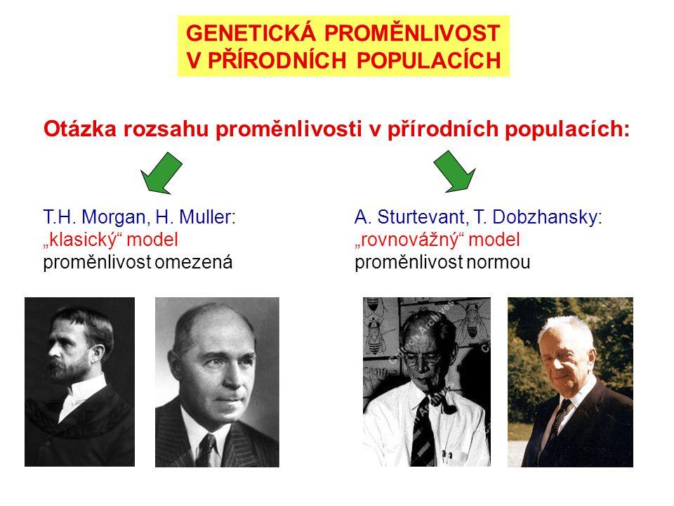 GENETICKÁ PROMĚNLIVOST V PŘÍRODNÍCH POPULACÍCH