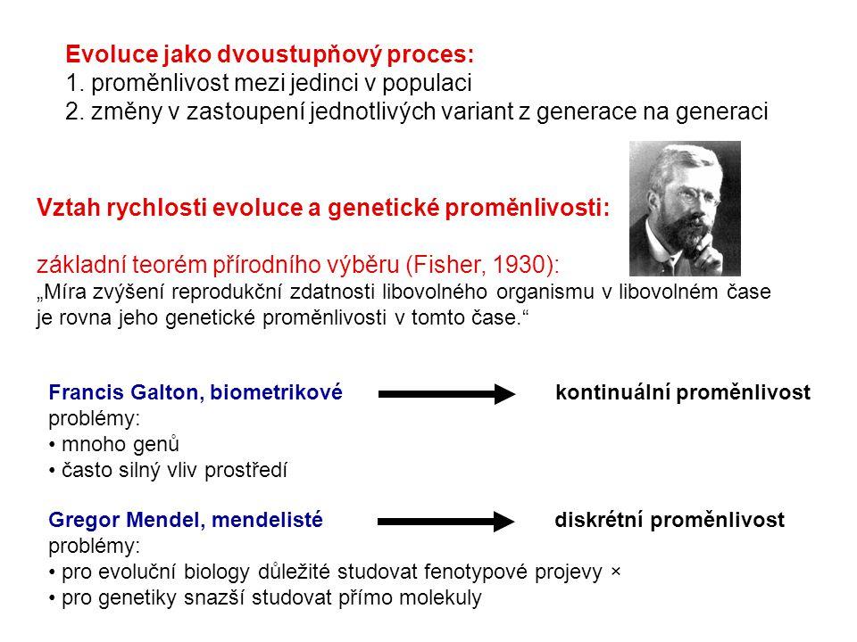 Evoluce jako dvoustupňový proces: