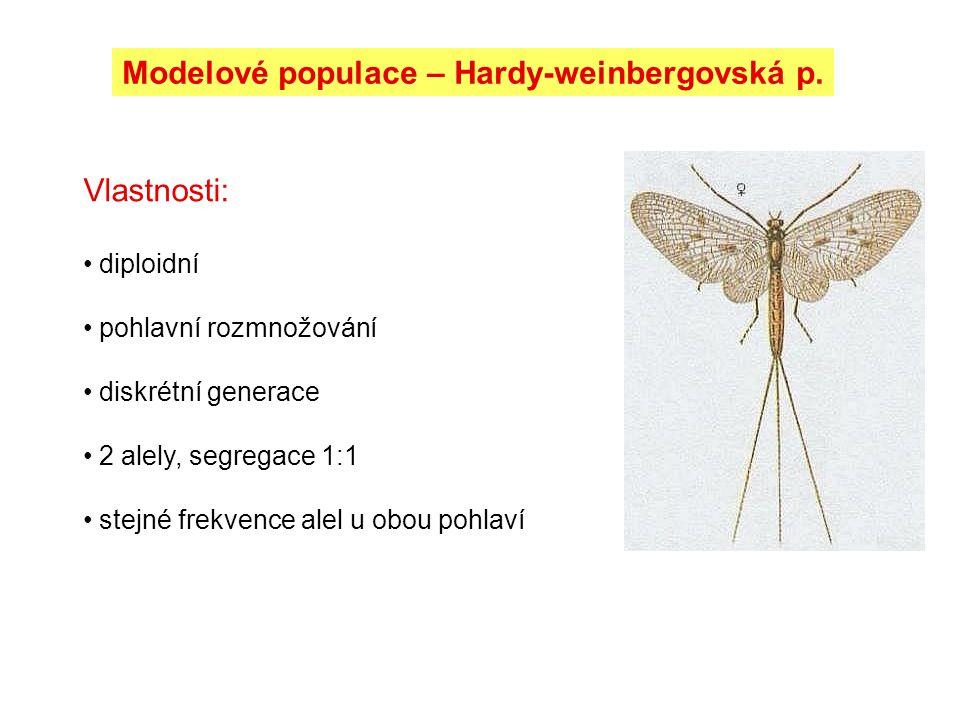 Modelové populace – Hardy-weinbergovská p.