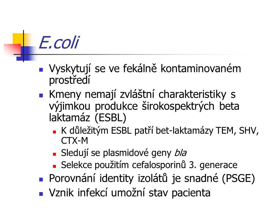E.coli Vyskytují se ve fekálně kontaminovaném prostředí