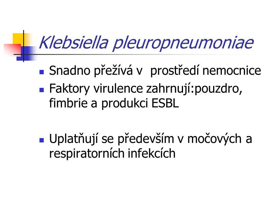Klebsiella pleuropneumoniae