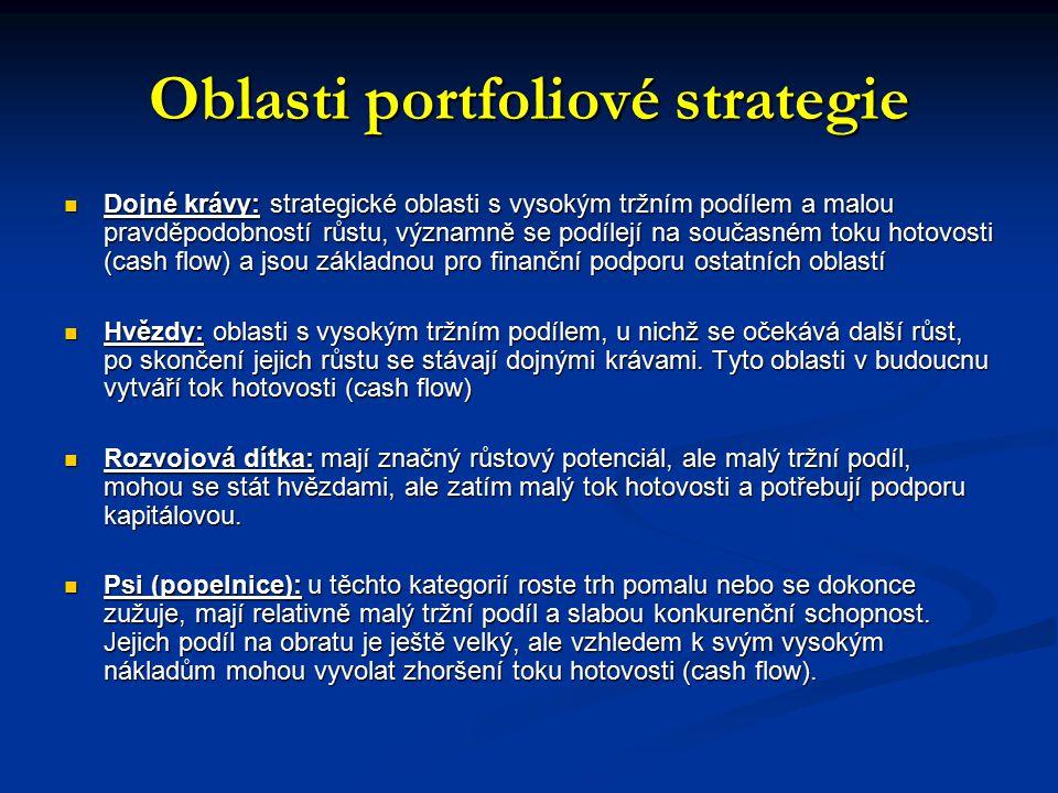 Oblasti portfoliové strategie