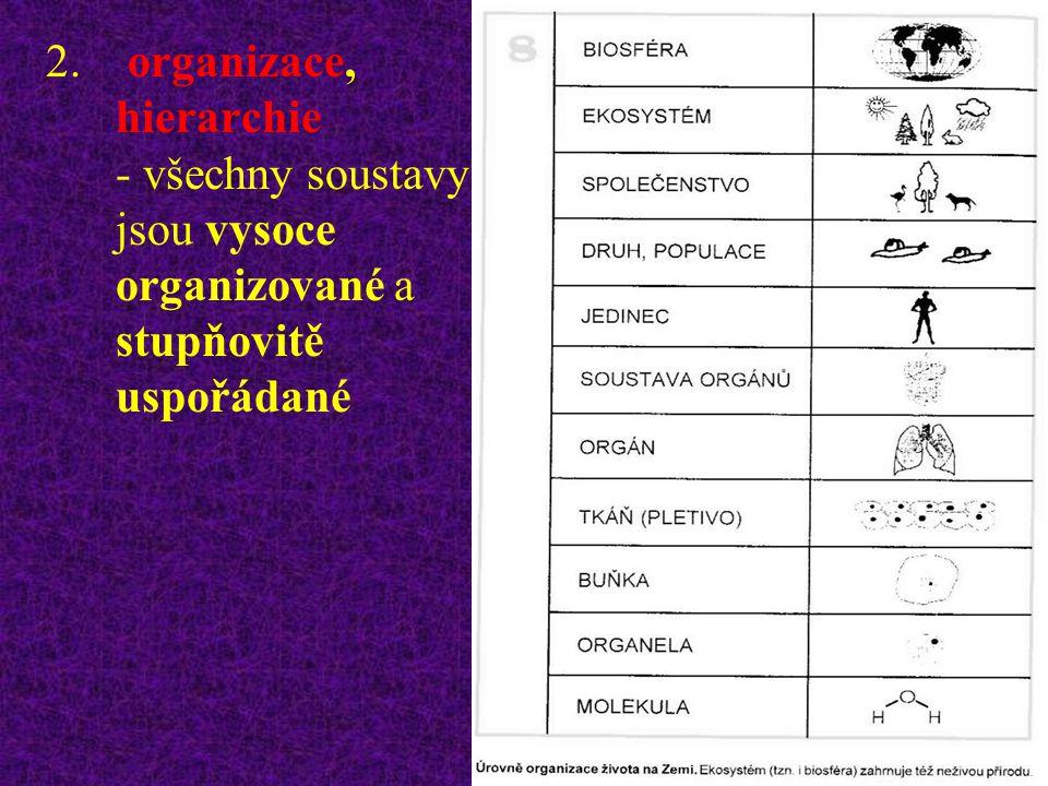 organizace, hierarchie - všechny soustavy jsou vysoce organizované a stupňovitě uspořádané