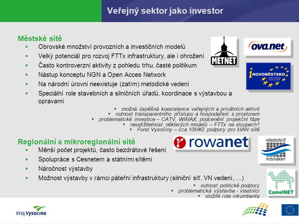 Veřejný sektor jako investor