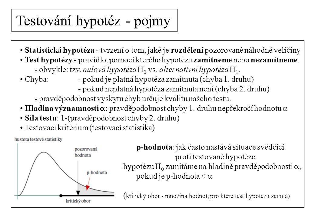 Testování hypotéz - pojmy