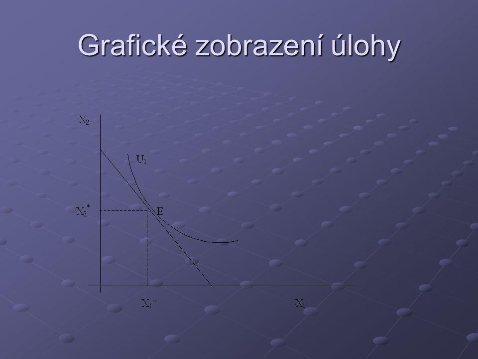 Grafické zobrazení úlohy