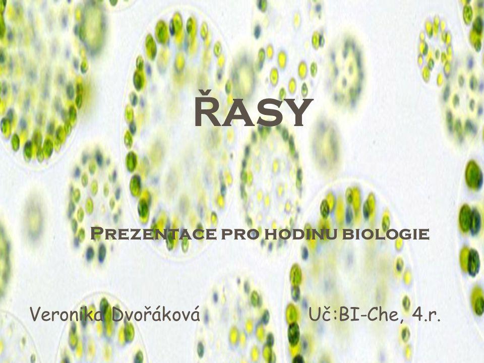 ŘASY ŘASY Prezentace pro hodinu biologie