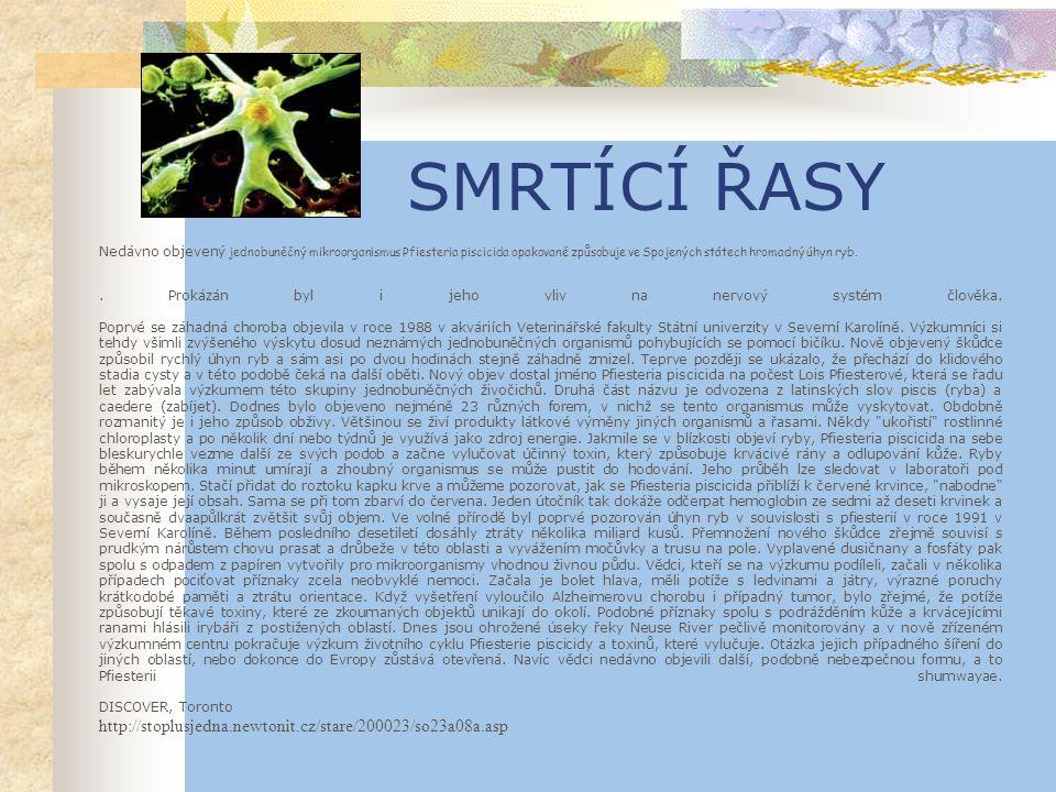 SMRTÍCÍ ŘASY http://stoplusjedna.newtonit.cz/stare/200023/so23a08a.asp