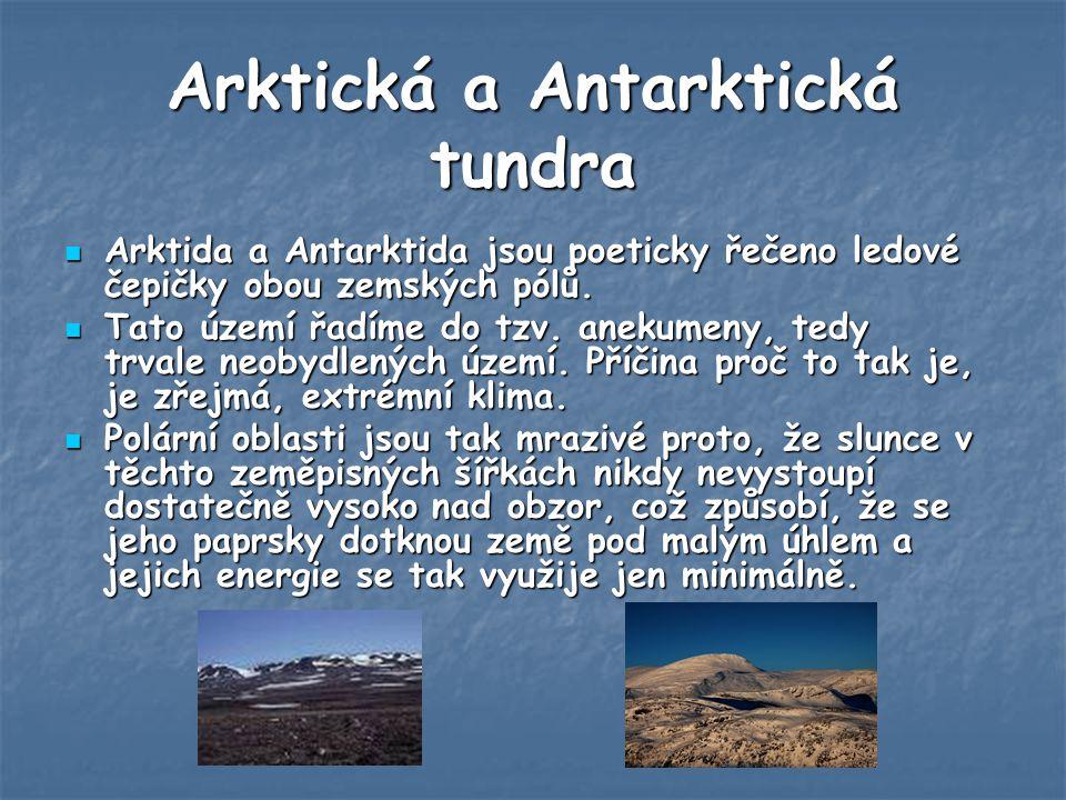Arktická a Antarktická tundra