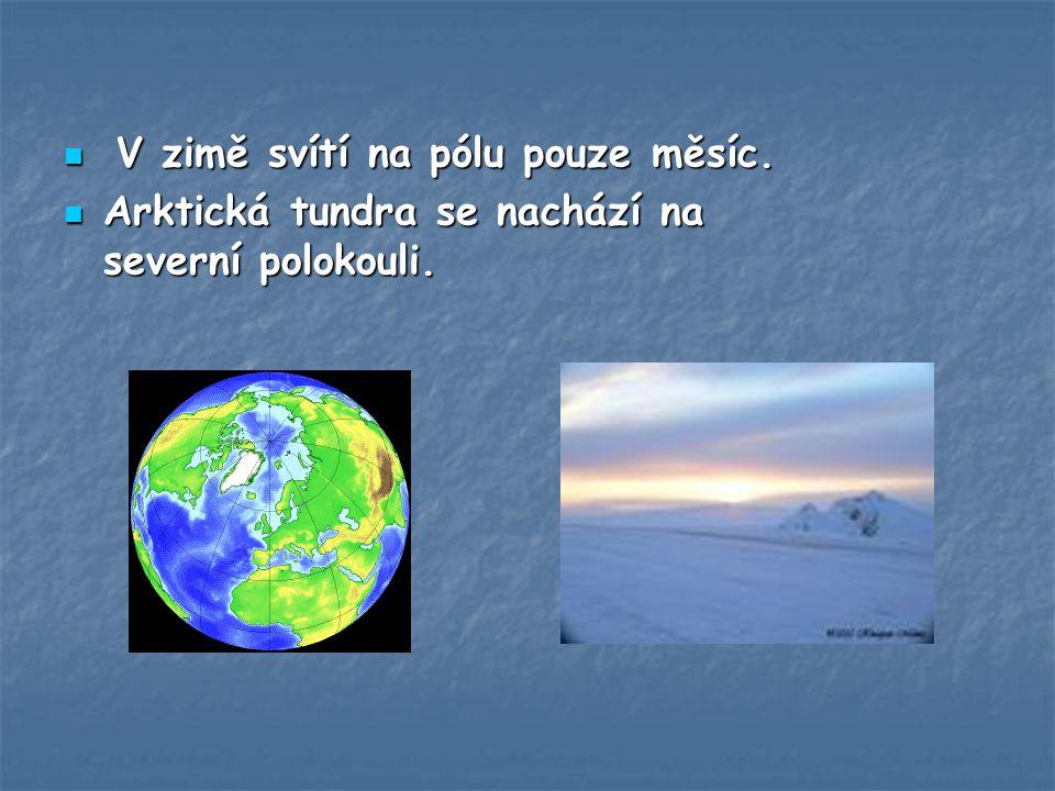 V zimě svítí na pólu pouze měsíc.