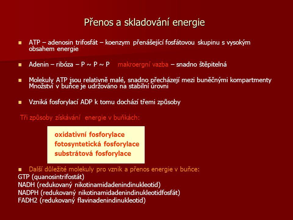Přenos a skladování energie